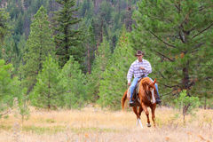 Free Cowboy Royalty Free Stock Image - 21836076