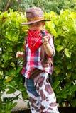 Cowboy Royaltyfri Foto