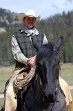 Cowboy. Astride Blue Roan horse stock photo