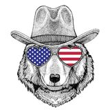 Cowboy animal occidental sauvage de port animal de chapeau de cowboy de Wolf Dog Wild Photos stock