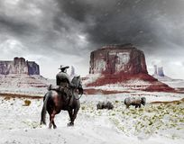 Cowboy approaching buffalos. Cowboy with his horse, in a snowy and cold Monument Valley, approaching a couple of buffalos. The image can be cropped vertically vector illustration
