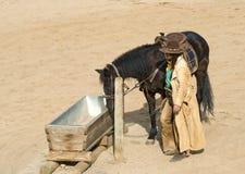 Cowboy arrosant son cheval Images libres de droits