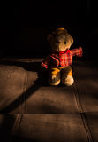 Cowboy  bear Stock Images