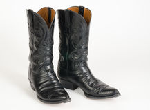 Cowboy Boots. fotografia stock libera da diritti