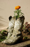 Cowboy boots. A pair of cowboy boots, with a flower planted inside royalty free stock photography