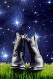 Cowboy Boots på natten royaltyfri fotografi