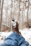 Cowboy boots resting with crossed ankles Stock Photography