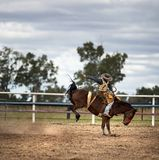 Cowboy On A Bucking Horse At A Rodeo. The horse`s rear legs are off the ground, kicking up dust.  Rodeo in outback Australia Royalty Free Stock Photography