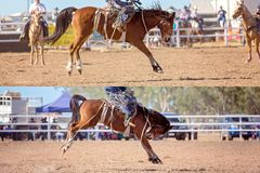 Cowboy And Bucking Saddle Bronco Collage. Collage of cowboy and horse competing in bucking saddle bronc event at country rodeo stock photos