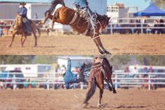 Cowboy And Bucking Saddle Bronco Collage. Collage of cowboy and horse competing in bucking saddle bronc event at country rodeo royalty free stock photography