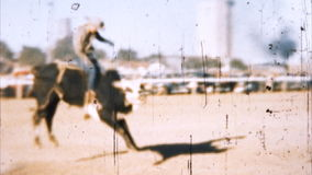 Cowboy Bull Ride (Archival 1950s) stock video