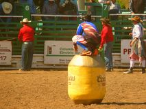 Cowboy bullfighter. S used to be called Rodeo Clowns. They have a job that is far more dangerous than that. These athletic young men can be the difference Royalty Free Stock Photo