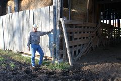 Cowboy By A Rustic Barn Stock Images