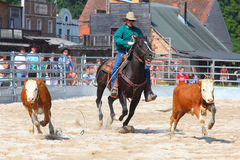 The Cowboy in a Calf roping competition. Stock Photos