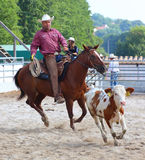 The Cowboy in a Calf roping competition. Unidentified Cowboy Participant in a Calf roping competition at The International Rodeo Show Strabag Prorodeo Tour on Stock Photos