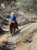 Cowboy che monta il suo cavallo. Fotografia Stock