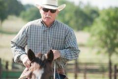 Cowboy che monta un cavallo Fotografie Stock Libere da Diritti