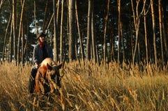 Cowboy com um cavalo Fotos de Stock Royalty Free