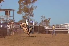 Cowboy Competing In een Stier het Berijden Gebeurtenis bij een Rodeo van het Land stock afbeeldingen