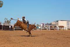 Cowboy Competing In een Stier het Berijden Gebeurtenis bij een Rodeo van het Land royalty-vrije stock foto