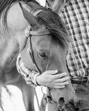 Cowboy con il cavallo immagini stock libere da diritti