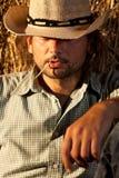 Cowboy con paglia nella sua bocca Fotografia Stock