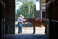 cowboy cowgirl horizontal horse Στοκ φωτογραφία με δικαίωμα ελεύθερης χρήσης