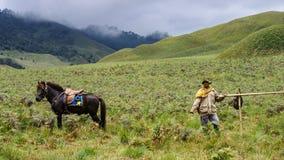 Cowboy dans Bromo, Indonésie Photos stock
