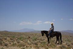 Cowboy dans le désert Images libres de droits