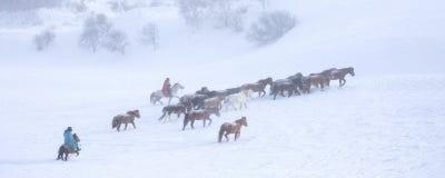 Cowboy de neige photo stock