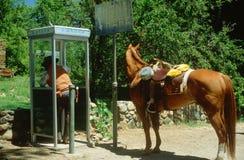 Cowboy in de voorsteden Stock Fotografie