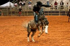 Cowboy del rodeo Fotografia Stock