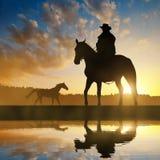 Cowboy della siluetta con il cavallo Fotografia Stock Libera da Diritti