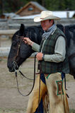 Cowboy, der blaues Roan Pferd anhält Stockbilder