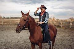 Cowboy, der ein Pferd auf eine Ranch, West reitet stockbild