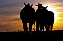 Cowboy, der mit Pferden geht Lizenzfreie Stockfotos