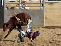 Cowboy, der seinen Sitz auf dem Stier verliert lizenzfreies stockbild
