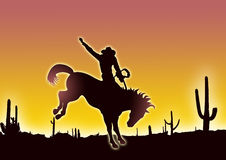 Cowboy in deserto Fotografia Stock