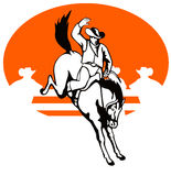 Cowboy die een bucking wild paard berijdt stock illustratie
