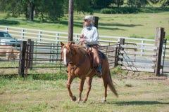 Cowboy die een paard berijdt Royalty-vrije Stock Afbeelding