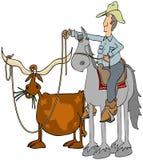 Cowboy die Texas roping longhorn Stock Afbeelding