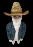 Cowboy divertente bendato immagini stock