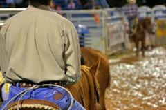 Cowboy do rodeio fotos de stock