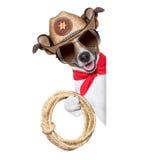 Cowboy Dog Images libres de droits