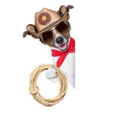 Cowboy dog. Cool cowboy dog behind white blank banner or placard royalty free stock images