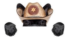 Cowboy dog. Cool cowboy dog hiding behind white blank banner or placard royalty free stock photos