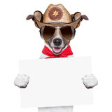 Cowboy dog. Cool cowboy dog holding a white blank big banner or placard stock image