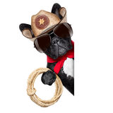 Cowboy dog. Beside a white blank banner or placard stock image