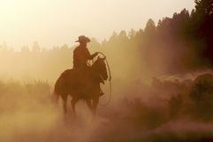 Cowboy in the Dust Royalty Free Stock Photo