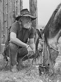 Cowboy e seu cavalo Fotografia de Stock